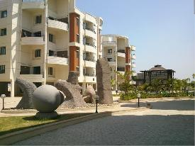 Property in Ajwa Road