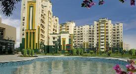 Property in Omaxe Nri City