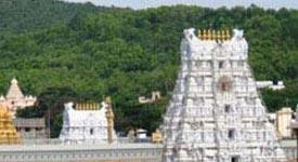 Property in Tirupati