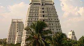 Property in Tiruvannamalai