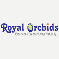 Royal Orchids