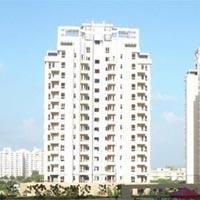 Orchid Garden - Gurgaon