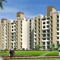 Ansal API Fernhill - Gurgaon