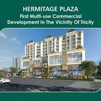 Hermitage Plaza
