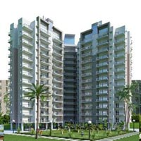 Ace Platinum - Greater Noida