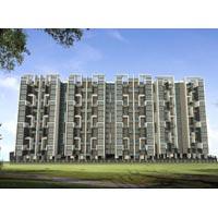 Marvel Ideal Spacio - Undri, Pune