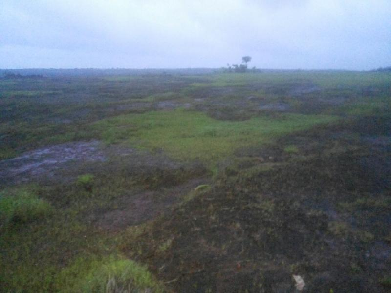Industrial Land / Plot for Sale in Rajapur, Ratnagiri - 250 Acre