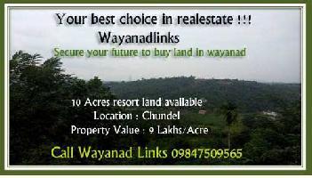 10 Acre Farm Land for Sale in Kenichira, Wayanad
