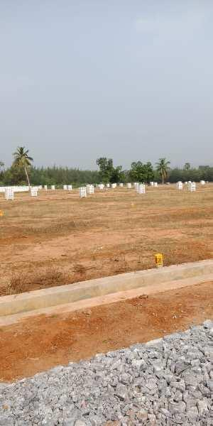 267 Sq. Yards Residential Plot for Sale in Bhogapuram, Visakhapatnam