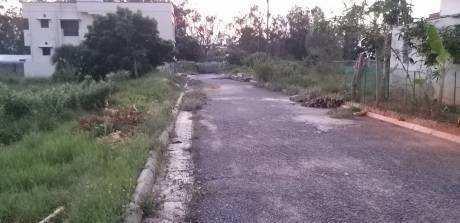 3600 Sq.ft. Residential Plot for Sale in Walajabad, Kanchipuram