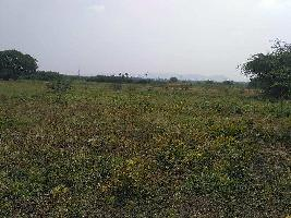 Farm Land for sale in Vadipatti, Madurai | Buy/Sell Agricultural