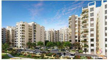 3 BHK Flat for Sale in Airport Road