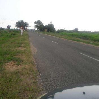 1700 Acre Farm Land for Sale in Sundaravelpuram, Thoothukudi