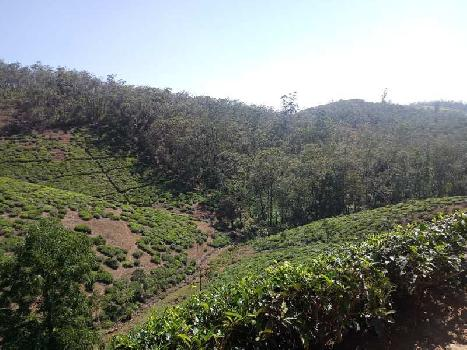 3000 Acre Farm Land for Sale in Udhagamandalam, Ooty