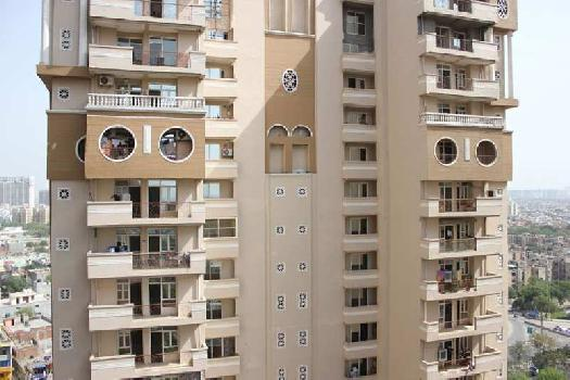 3 BHK 1295 Sq.ft. Residential Apartment for Rent in Sector 34 Noida