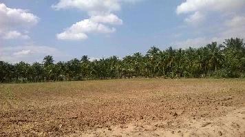 1000 Sq.ft. Residential Plot for Sale in Pratap Nagari, Cuttack