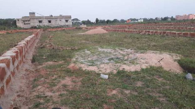 1200 Sq.ft. Residential Plot for Sale in Balikuda, Cuttack