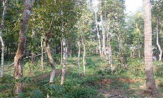 18 Cent Residential Plot for Sale in Perinthalmanna, Malappuram