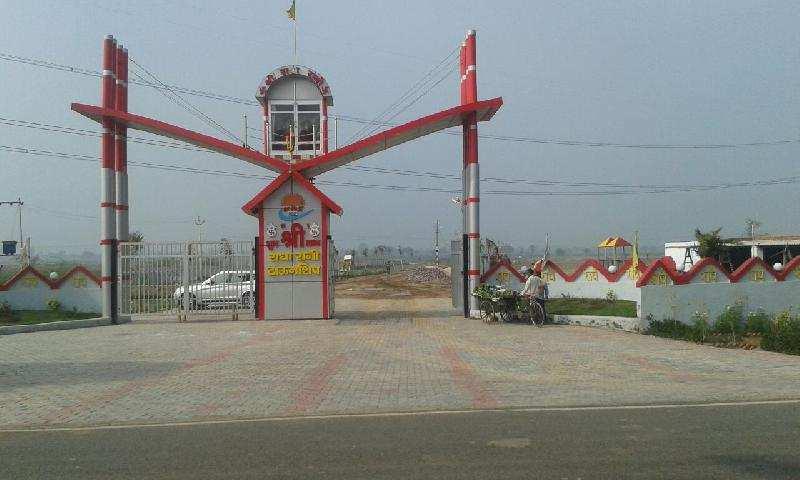 Residential Plot for Sale in Barsana, Mathura - 1350 Sq.ft.