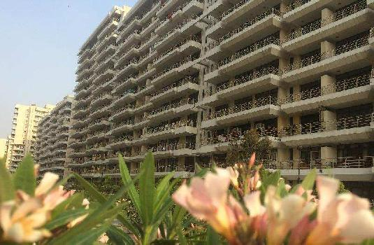 2 BHK 1210 Sq.ft. Residential Apartment for Sale in TDI City Kundli, Sonipat