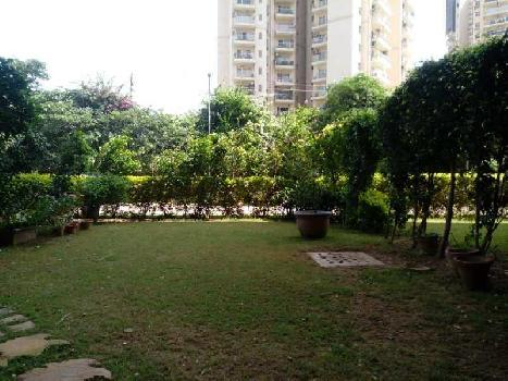 450 Sq. Meter Residential Plot for Sale in Sector 52 Gurgaon