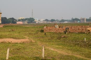 1500 Sq.ft. Residential Plot for Sale in Trisulia, Cuttack