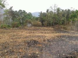 25 Cent Residential Plot for Sale in Perinthalmanna, Malappuram