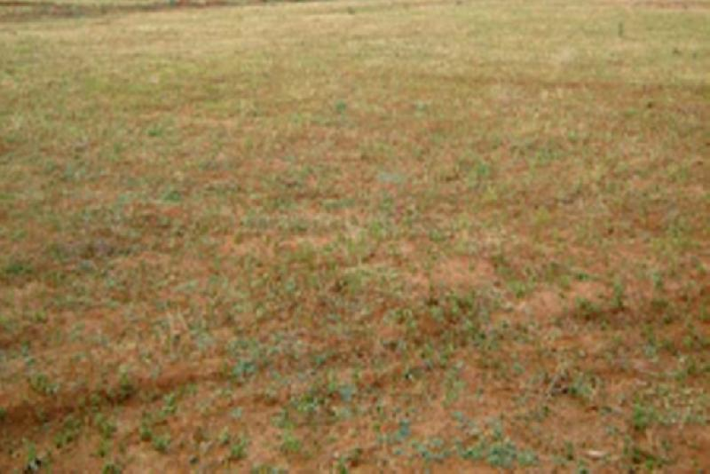 Commercial Lands /Inst. Land for Sale in Koramangala, Bangalore - 6000 Sq. Feet