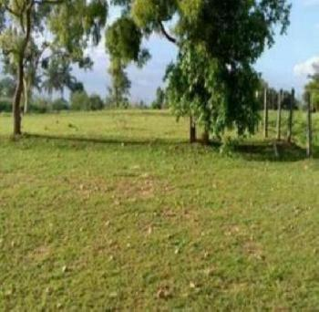 11 Acre Commercial Land for Sale in Hoskote, Bangalore