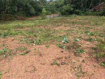 87 Cent Residential Plot for Sale in Koduvayur, Palakkad