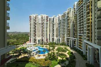 3 BHK 1843 Sq.ft. Residential Apartment for Sale in Kanakapura Road, Bangalore