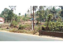 50 Cent Residential Plot for Sale in Alathur, Palakkad
