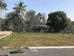 19 Cent Residential Plot for Sale in Thenkurissi, Palakkad