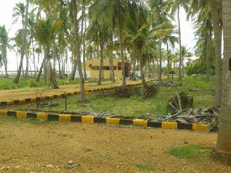 1200 Sq.ft. Residential Plot for Sale in Trichy Madurai Road, Tiruchirappalli