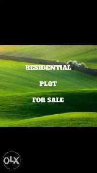 20 Cent Residential Plot for Sale in Mallappally, Pathanamthitta
