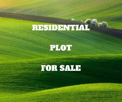 200 Sq. Yards Residential Plot for Sale in Sultanpur Lodhi, Kapurthala