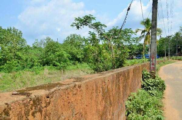 50 Cent Residential Plot for Sale in Perinthalmanna, Malappuram