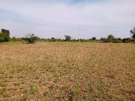 20 Acre Farm Land for Sale in Sira, Tumkur Turuvekere