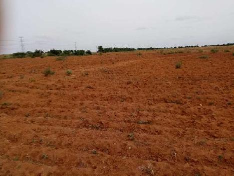 20 Acre Farm Land for Sale in Sira, Tumkur Turuvekere