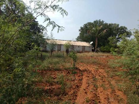 30 Acre Farm Land for Sale in Hiriyur, Chitradurga