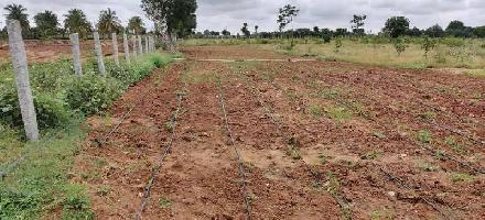 15 Acre Farm Land for Sale in Hiriyur, Chitradurga