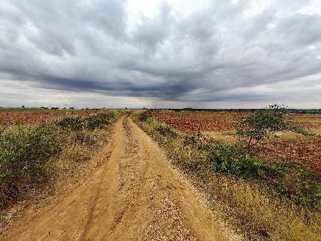 18 Acre Farm Land for Sale in Hiriyur, Chitradurga