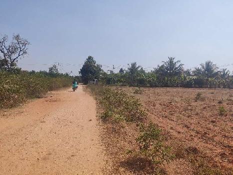 5 Acre Farm Land for Sale in Sira, Tumkur Turuvekere