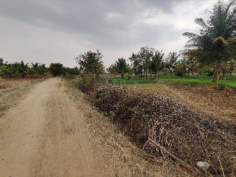 7 Acre Farm Land for Sale in Sira, Tumkur Turuvekere