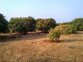 Farm Land for sale in Ahmednagar | Buy/Sell Agricultural