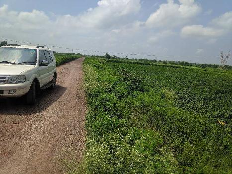 70 Acre Farm Land for Sale in Civil Lines, Raipur