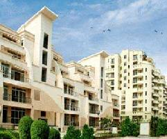 3 BHK Flat for Sale in Sector 105, Noida
