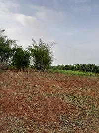 Farm Land for sale in Mahad, Raigad | Buy/Sell Agricultural