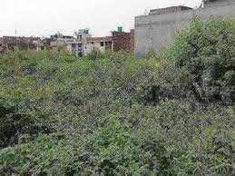20 Marla Residential Plot for Sale in Chabbewal, Hoshiarpur