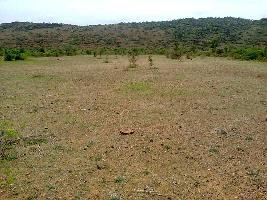 4 Acre Industrial Land for Sale in Pardi, Vapi